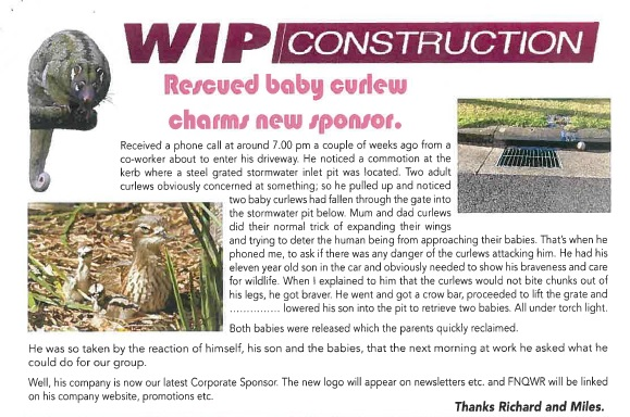 FNQ Wildlife Rescue article